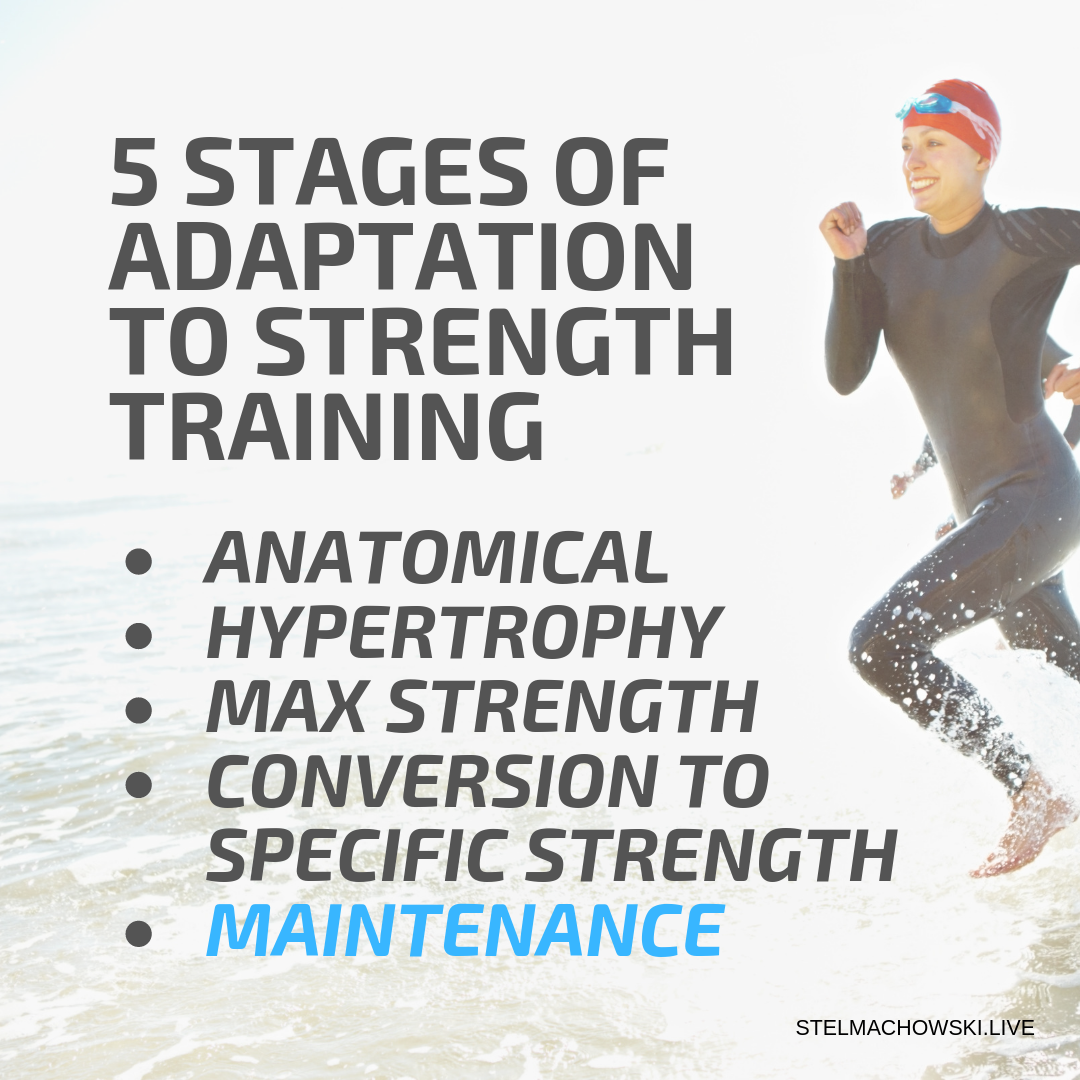 stages of strength training adaptation